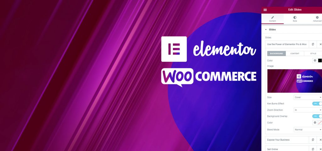 elemetor woo bg 1